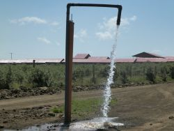 Borehole producing Water
