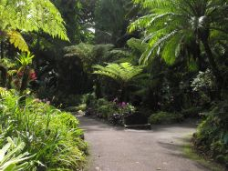 Arboretums